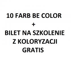 Zestaw 10 farb Be Color + bilet na szkolenie z koloryzacji Be Color gratis