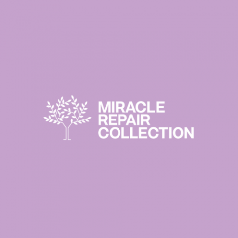 Alter Ego Miracle Repair Collection